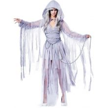 Haunting Beauty Costume DR39018