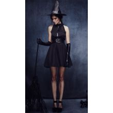 Bewitching Vixen Costume DR39048